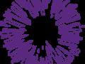 logo van Inspireer, sensitief